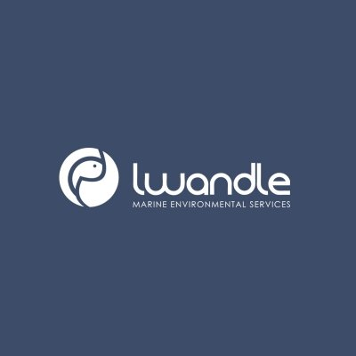 Lwandle website by Lucid Websites