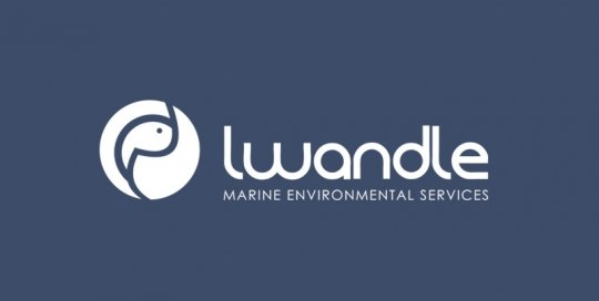 Lwandle website by Lucid Websites
